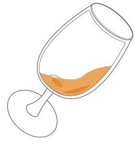 郁金香或科比塔威士忌酒杯