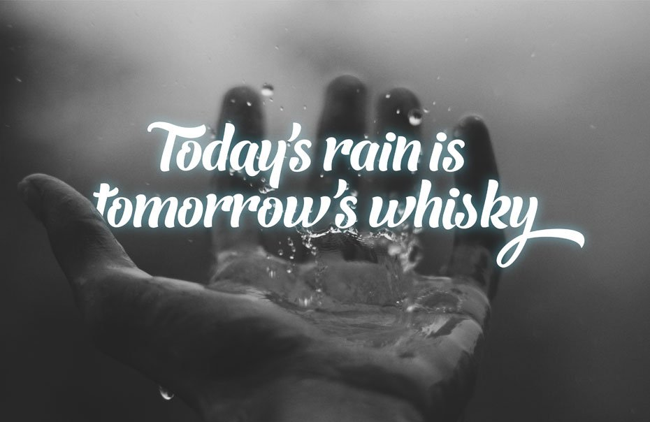Tday's Rain is Tomorrow's Whisky